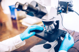 Scientist hands using microscope for sample testing, digital transformation