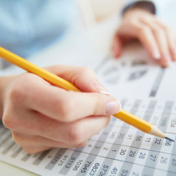 Accountant reviewing spreadsheet